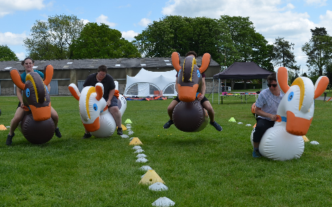 Inflatable Horses Hire and Rental